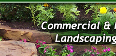 Landscaping Lawn Maintenance Tomball Cypress Houston TX