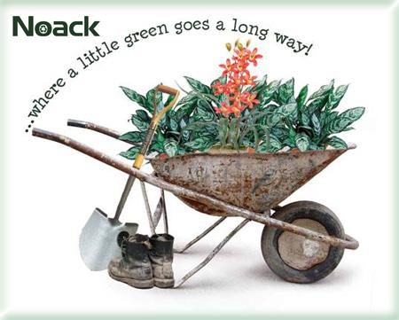 Noack Landscaping